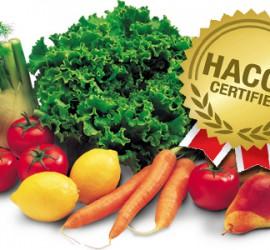 haccp_alimentare